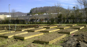 community-garden-mci-kentucky